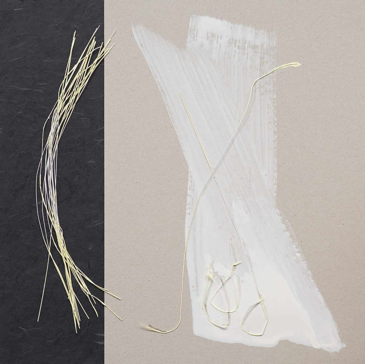 Nature, Nurture 1thread, house paint, paper, cardboard on MDF 46x46 cm